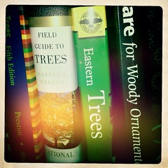 Day 241--8/28/12: Tree books