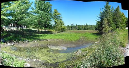 autostitch panorama ontario canada nature landscape nikon swamp lanarkcounty