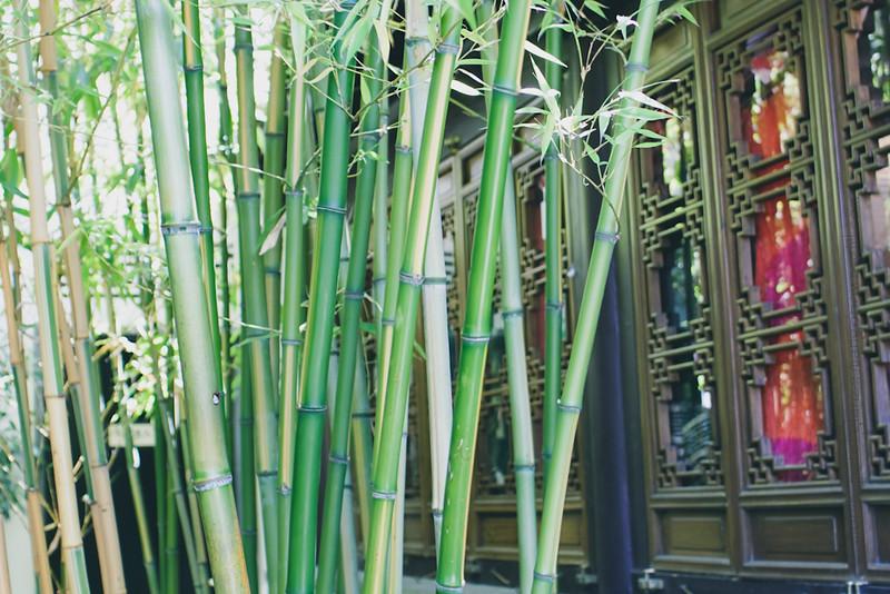 lan su chinese garden 10