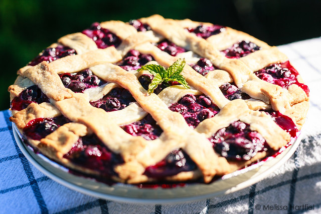 Blueberry pie cooling outside