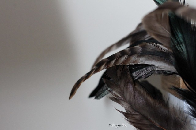 Feathers for AW12