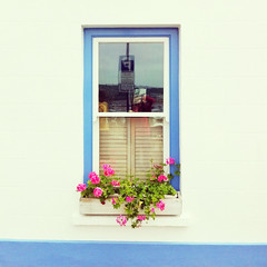 Window box at Gorey