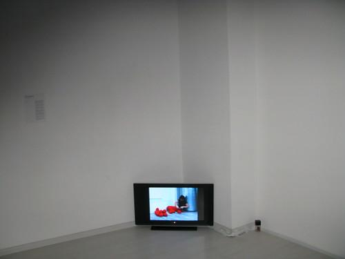 Bea Camacho_Enclose_Installation Image