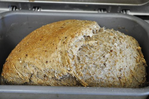 whole grain bread machine 13