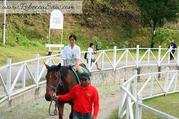 Malaysia TOurism Hunt 2012 - Shahzan Inn Fraser Hill-007