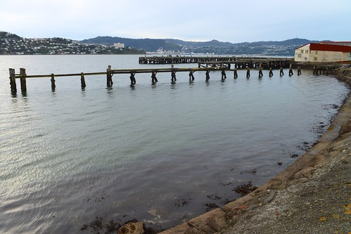 <p>Shelley Bay, Wellington</p>