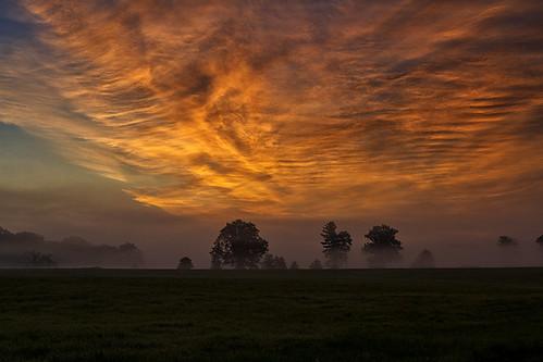 morning sun newyork field fog clouds rural sunrise landscape dawn pinebush