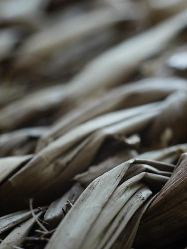 macro finland bokeh scape straws iitti kymenlaakso strawmat topconvariableextensiontube panasoniclumixgh2 topcorremacro58mmf35
