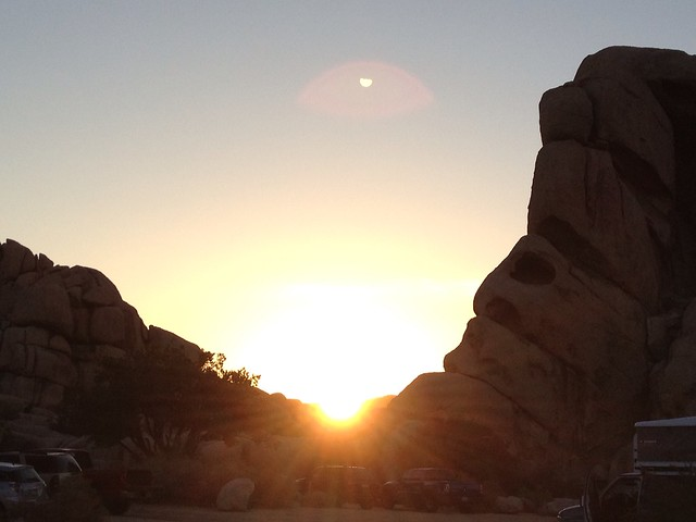 Sunrise, Joshua Tree