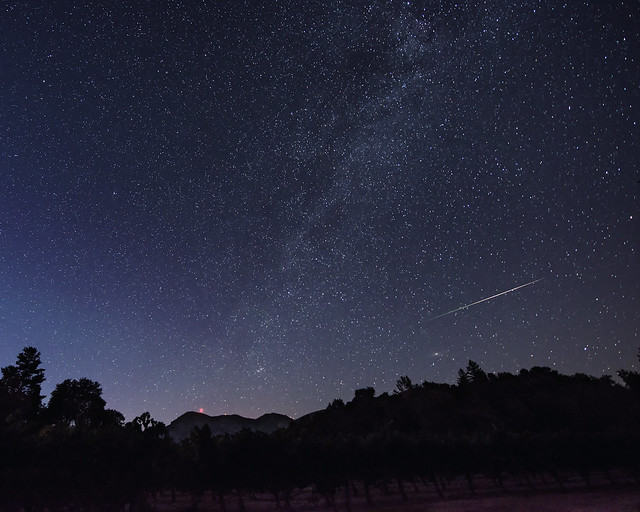 Perseid, Mt. St. Helena, and Vines