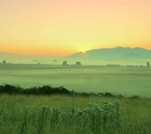mountain fog sunrise washington northwest
