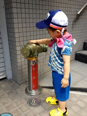 消火栓を持ち上げてるように見えなくもないとらちゃん (2012/8/1 9) (2012/8/19)