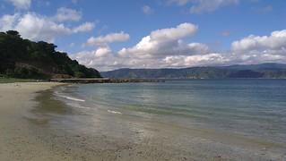 Image de Scorching Bay Beach près de Wellington. flickrandroidapp:filter=none