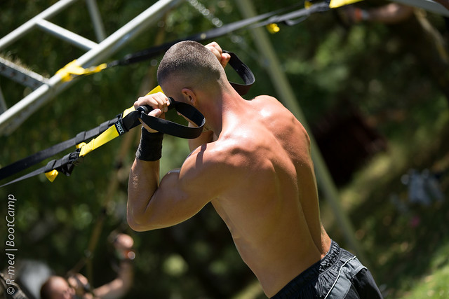 TRX 2 Arm Bicep Curls