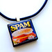 My Spam Necklace - I LOVE SPAM.