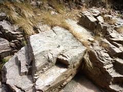 Remontée du haut-Velacu : spit et anneau de canyoning à la fin des grandes dalles