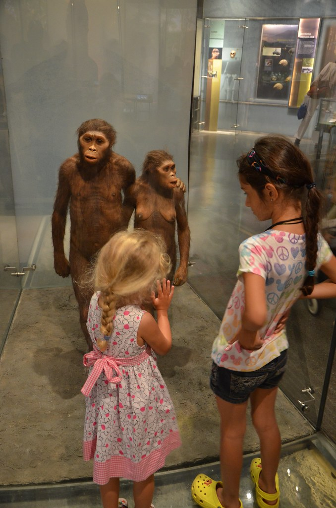 Violet And Sophie And The Hominids