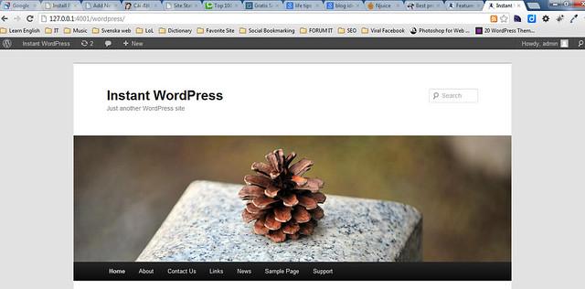 Cài đặt WordPress trên localhost với 1 cú click 103