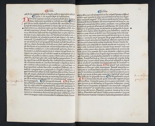 Manuscript annotations in Magninus Mediolanensis: Regimen sanitatis