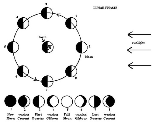 blank moon phases diagram