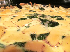 Spinach and gruyere quiche with a hashbrown crust