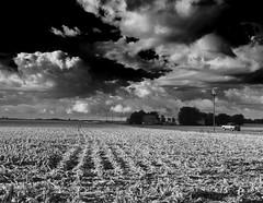 Yet more black & white landscapes