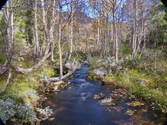 Høstdager på hytta i Gausdalen. 20. -23. september