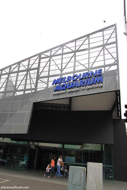Walk With The Shark Melbourne Aquarium Main Building