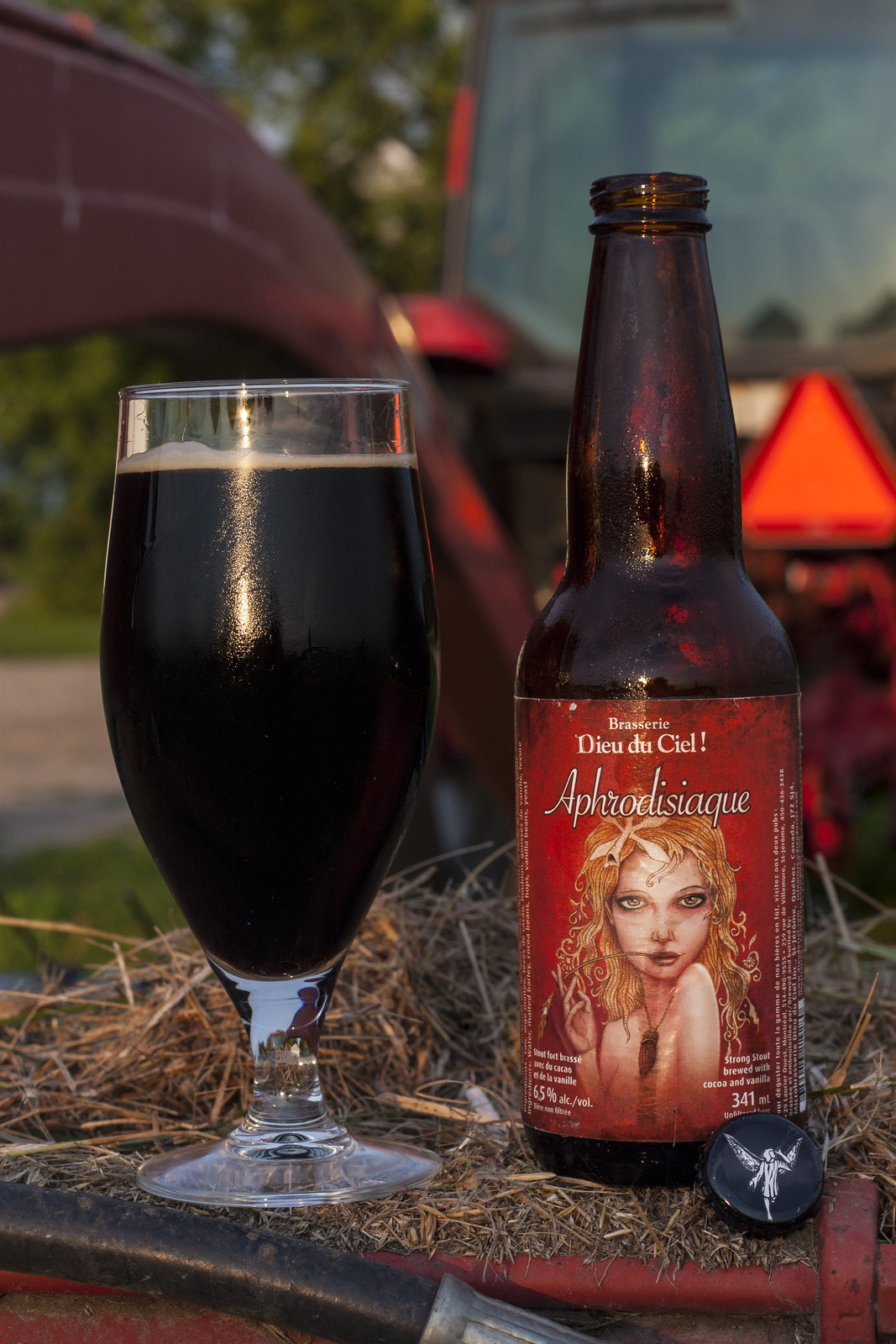 Review: Dieu du Ciel Aphrodisiaque Stout