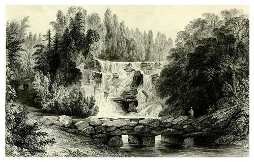 003- Cascada en Virginia Water- A topographical history of Surrey 1878-Vol 2- Edward Wedlake Brayley