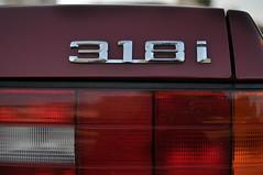 wheel(0.0), grille(0.0), bumper(0.0), vehicle registration plate(0.0), automobile(1.0), automotive tail & brake light(1.0), automotive exterior(1.0), vehicle(1.0),