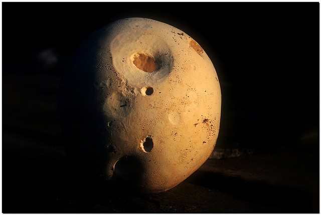 Sunrise on Puffball Moon.
