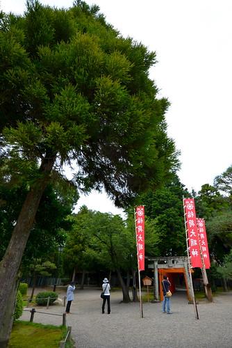 2012夏日大作戰 - 熊本 - 出水神社 (12)