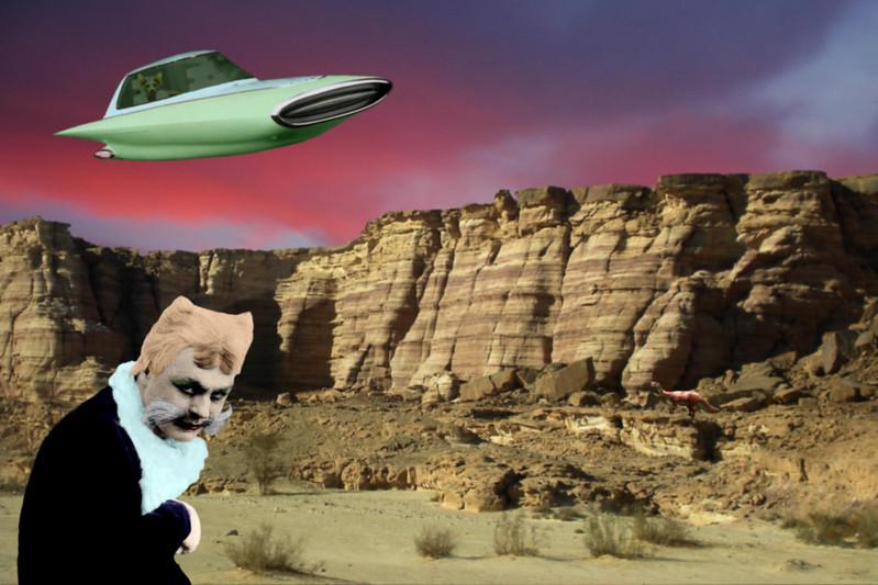 Sky Cat Of The Future