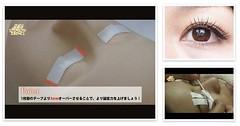 ジャパンアイリストカレッジ まつげエクステ基礎施術工程を完全収録講座の説明写真