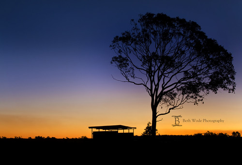 A Country Sunset - Near Dalby