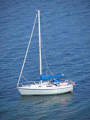 sail, sailboat, keelboat, vehicle, sailing, sea, mast, watercraft, scow, boat,