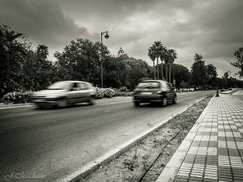 250/365+1 Ctra. Jerez-Los Barrios by Juan_Machado