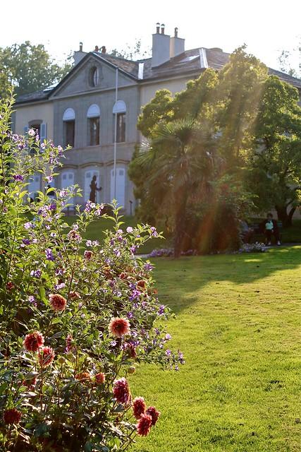 Les conservatoire et jardin botaniques ville de gen ve for Restaurant cacher le jardin geneve