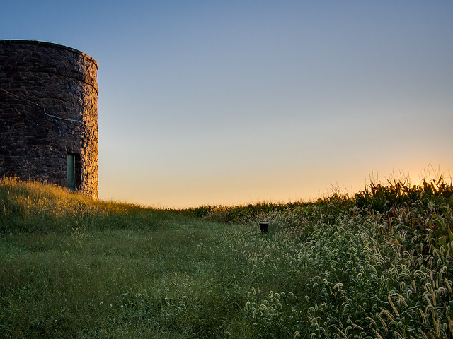 The Tower Near the Corn