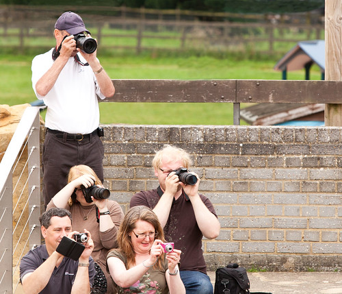 What do you call a natural gathering of photogs?