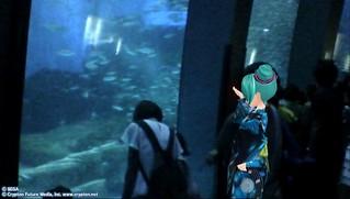 水族館内で
