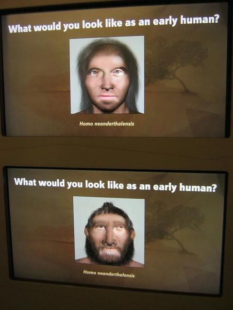 你如果是猿人长什么样?