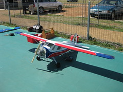 model aircraft(1.0), monoplane(1.0), aviation(1.0), airplane(1.0), wing(1.0), vehicle(1.0), radio-controlled aircraft(1.0), radio-controlled toy(1.0), ultralight aviation(1.0),