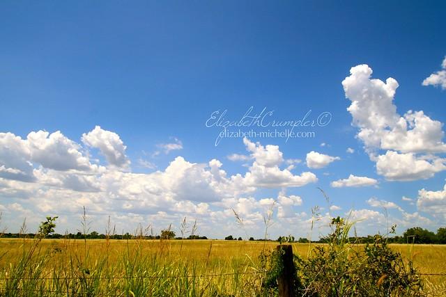 sunny day on the prairie