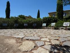 20160815 052 Aix-en-Provence - Avenue Paul Cézanne - Terrain des Peintres