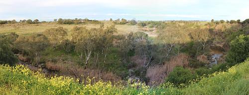 Panorama of Merri Creek and Merri Gorge, Campbellfield