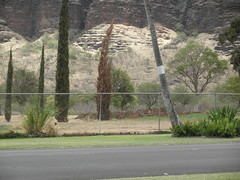 Makaha Valley Country Club 220