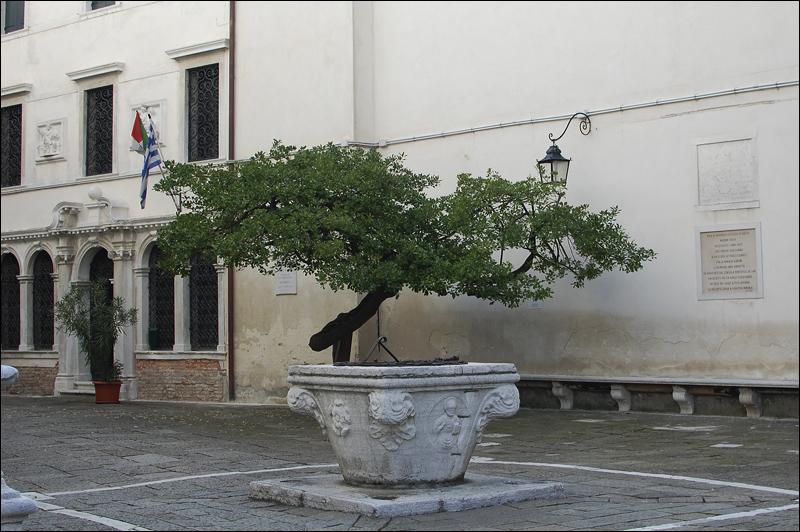 Venezia_0866