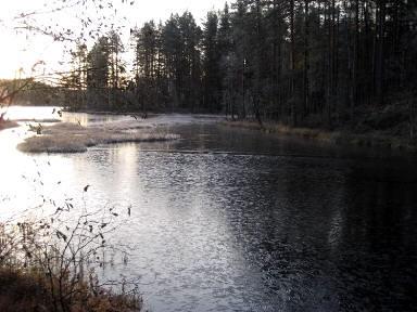 Talvi tulee_5